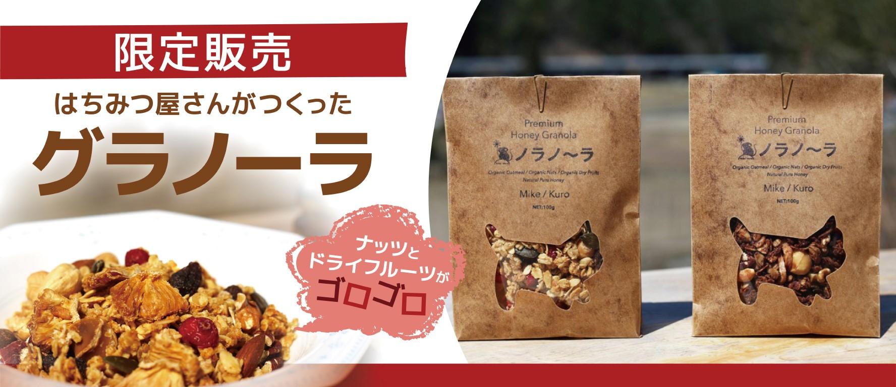 1000円OFFクーポンプレゼント!