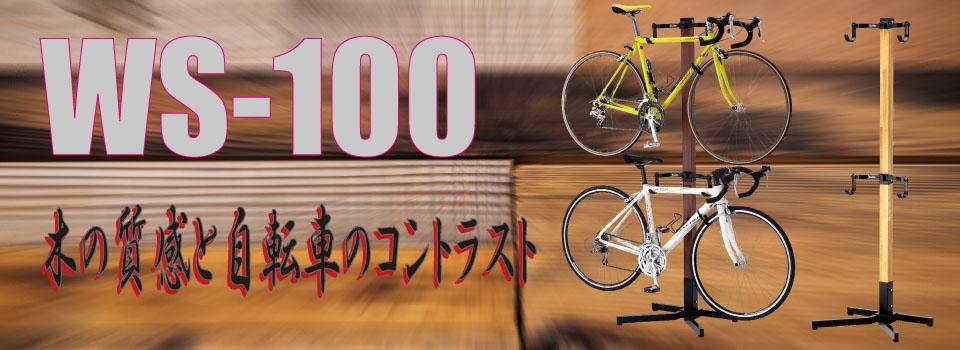 WS-100