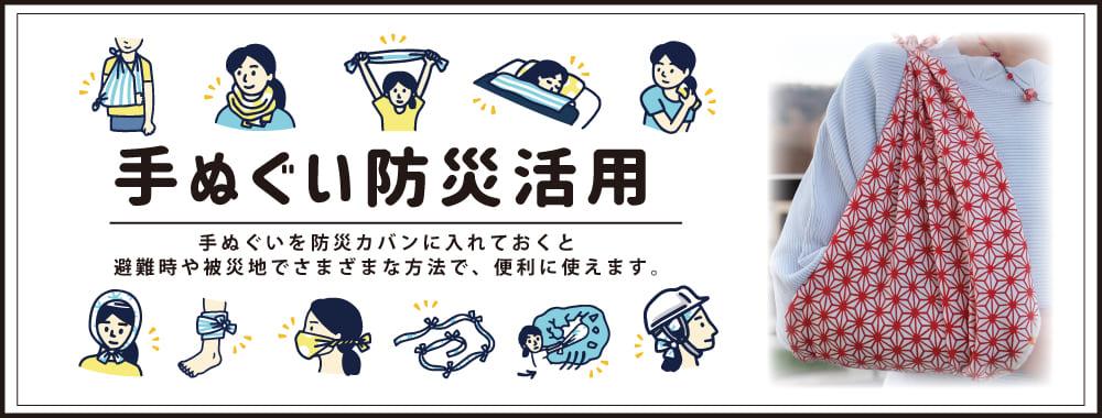 Tokyo Tokyo「東京みやげ」アートフレームと絵てぬぐい