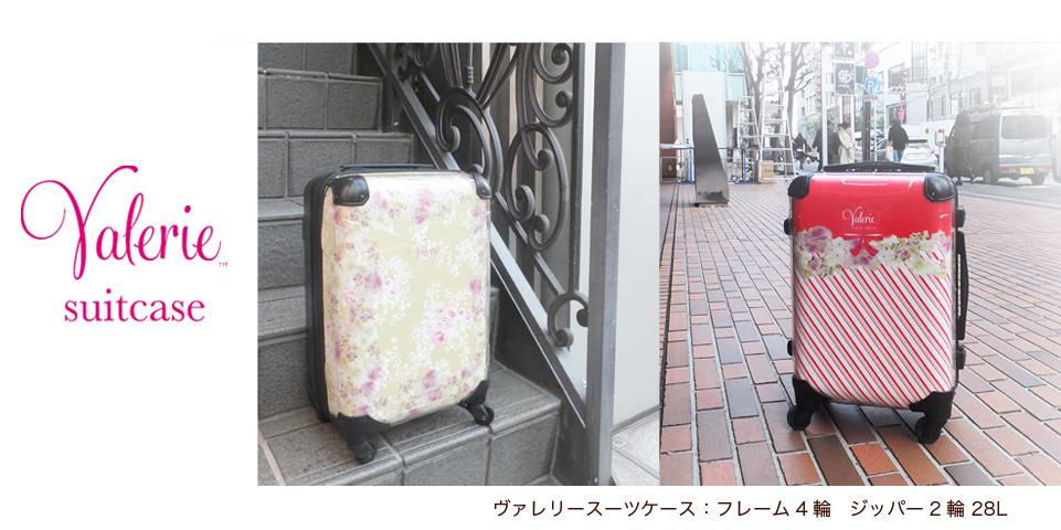 VTS_suitcase